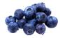 pdf_blueberry.png